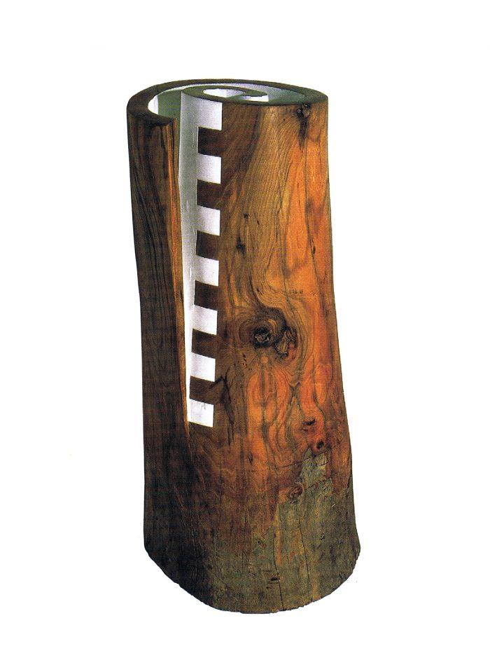 La imagen tiene un atributo ALT vacío; su nombre de archivo es 15-gabriel_fuertes-madera_de_espiral-700x959.jpg