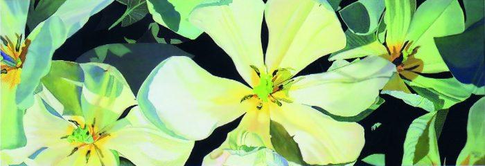 La imagen tiene un atributo ALT vacío; su nombre de archivo es 38-carmen-varela-700x240.jpg