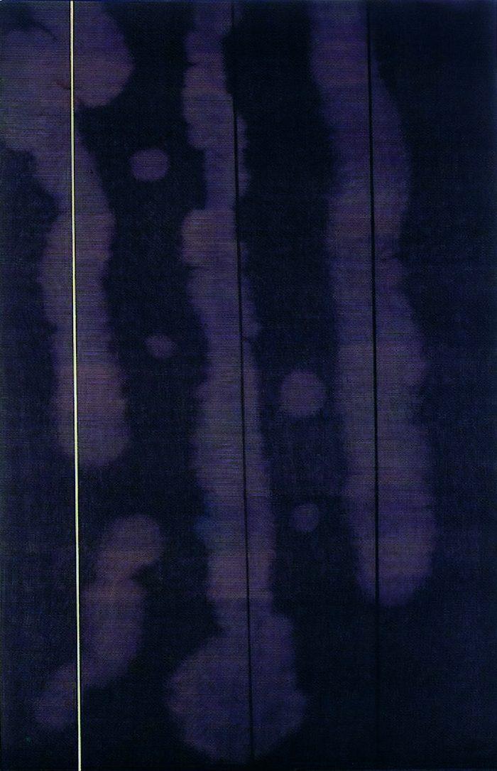 La imagen tiene un atributo ALT vacío; su nombre de archivo es natalia-diaz-mella-bustillo-700x1085.jpg