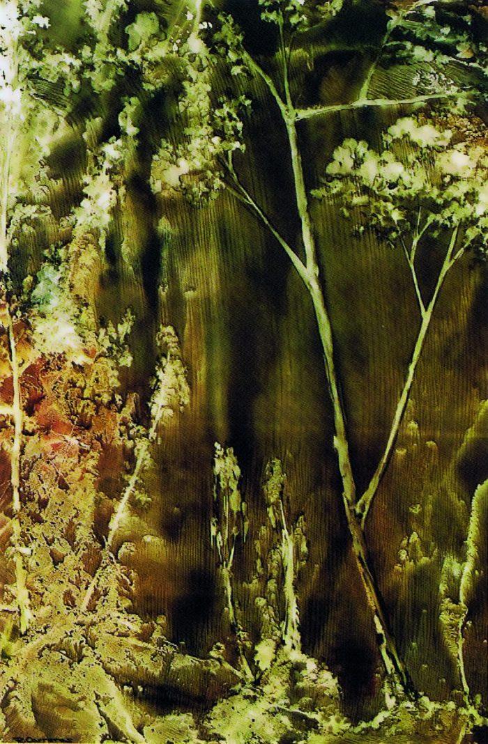La imagen tiene un atributo ALT vacío; su nombre de archivo es 9-ricardo-carreras-cabello-700x1068.jpg