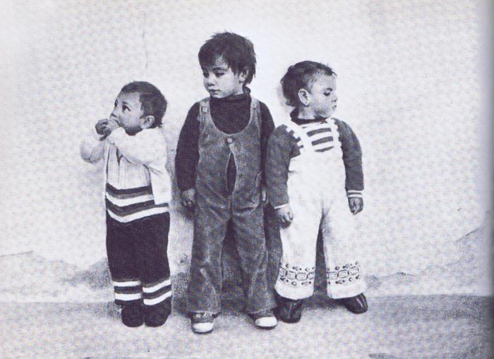 La imagen tiene un atributo ALT vacío; su nombre de archivo es 48-2-700x509.png
