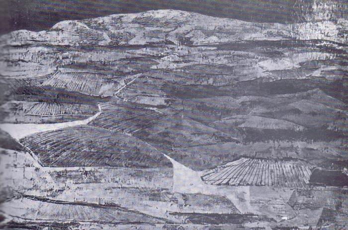 La imagen tiene un atributo ALT vacío; su nombre de archivo es 59-2-700x464.png