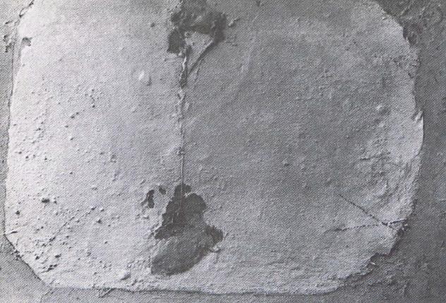 La imagen tiene un atributo ALT vacío; su nombre de archivo es 104.png