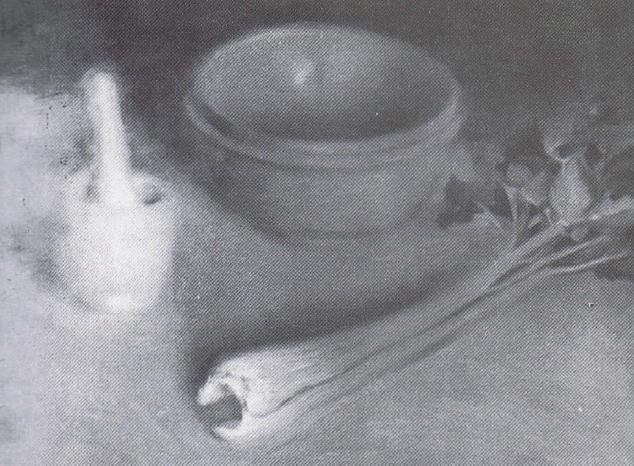 La imagen tiene un atributo ALT vacío; su nombre de archivo es 123.png