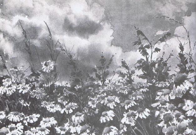 La imagen tiene un atributo ALT vacío; su nombre de archivo es 56.png